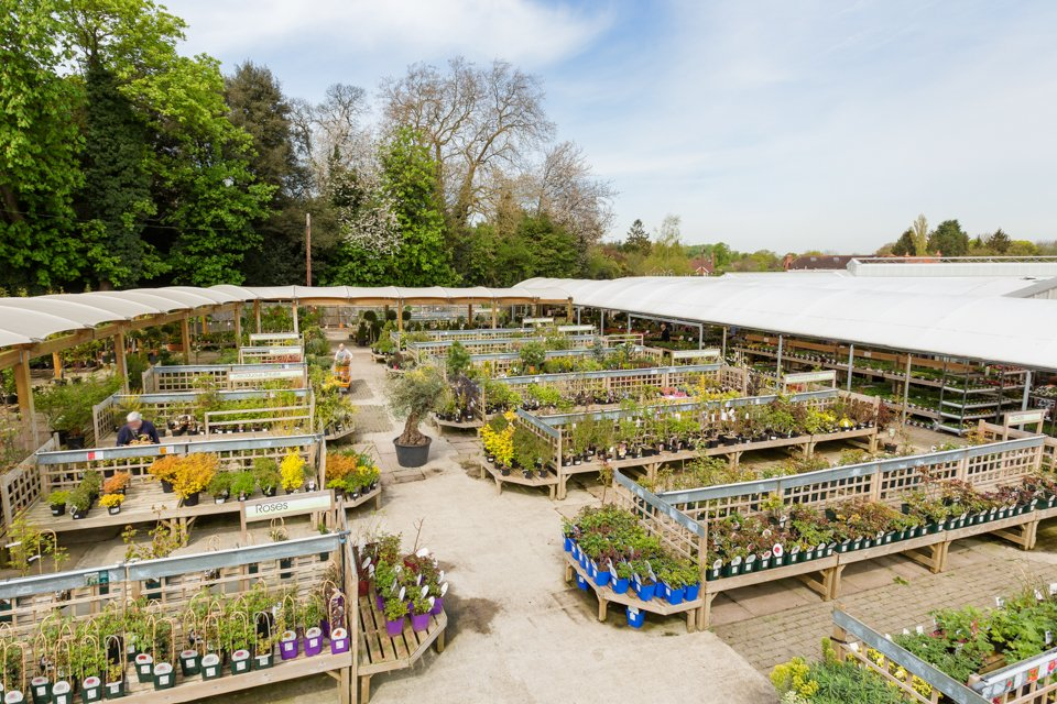 Ashtead Park Garden Centre in Surrey