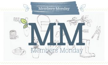 Members Monday means triple points!