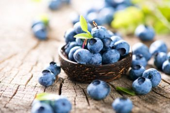 Plant blueberries in containers