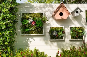 Top 6 ideas for vertical gardening
